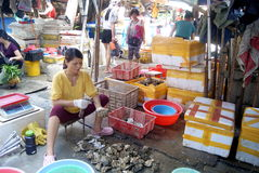Women in the seafood market stripping oysters Stock Images