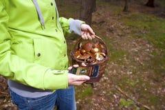 Women searching mushroom with phone, Mushrooming Stock Photography