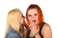 Women Secrets. Two happy young girlfriends share secrets Royalty Free Stock Image