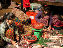 Women selling fish at food marketplace. Cambodia Royalty Free Stock Photography