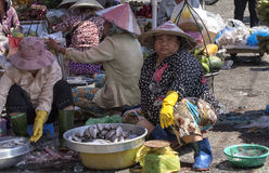 Women selling fish Stock Images