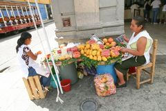 Women selling fresh fruits and juices on a street of Oaxaca, Mex Stock Image