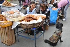 Women selling on the street of La Paz. Royalty Free Stock Images