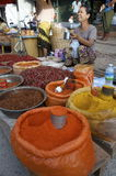 Women sells  hot chills and curry's. Market life Burma hot chills and curry's Stock Photography
