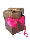 Women sexy underwear with gift box  on white Stock Photography