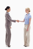 Women shaking hands happily. Against white background Royalty Free Stock Photos