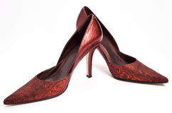 Women shoes. On white background stock photography