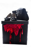 Women shoes panties gloves and purse Stock Images