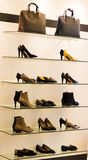 Women shoes on rack. Women shoes on display on racks Royalty Free Stock Images