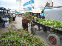 Women shopping at the Souk. Bizerte. Tunisia stock photography