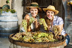 Women showing grapes. Female farmers showing great bunches of grapes Stock Images
