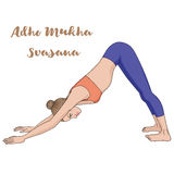 Women silhouette. Adho mukha svanasana. Downward dog. Royalty Free Stock Photos