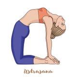Women silhouette. Camel yoga pose. Ustrasana. Women silhouette. Camel yoga pose. Ustrasana Vector illustration Stock Photos