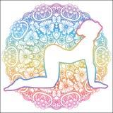 Women silhouette. Cow yoga pose. Bitilasana. Stock Image