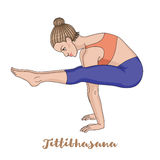 Women silhouette. Firefly yoga pose. Tittibhasana. Vector illustration Royalty Free Stock Photo
