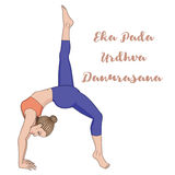 Women silhouette. One legged downward facing dog Yoga Pose. Eka Pada Adho Mukha Svanasa Royalty Free Stock Photo