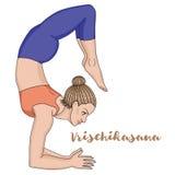 Women silhouette. Scorpion yoga pose. Vrischikasana. Vector illustration Royalty Free Stock Image