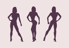 Women silhouettes athletes. Poses bodybuilders and fitnesbikini. Stock Images