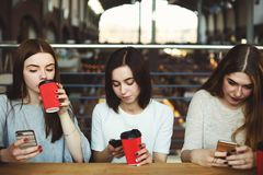 Women sitting at cafe engrossed in reading networks Royalty Free Stock Image