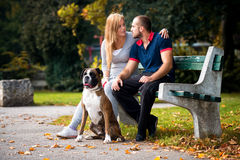 Women Sitting Outdoors With Her Pet Dog German Boxer Royalty Free Stock Image