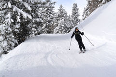 Women skiing. Mature woman skiing in the forest, Marilleva Italy stock photography