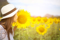 Women smells sunflower in nature. Women smells sunflower in , relax Royalty Free Stock Photos