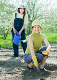 Women sows seeds  at field Royalty Free Stock Image