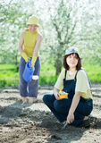 Women sows seeds in soil Stock Photos