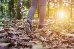 Women Sports Shoes and Meadows royalty free stock photo