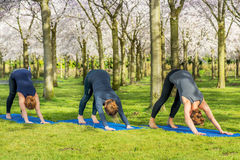 Women standing in a downward facing dog pose Royalty Free Stock Images