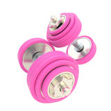 Women strength: pink pair of dumbbells Stock Image