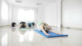 Women students working out their flexibility on a mat during a yoga class in slow motion -. Women students working out their flexibility on a mat during a yoga stock video footage