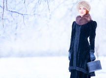 Women with suitcase. Beautiful redhead woman with suitcase in winter park Stock Images
