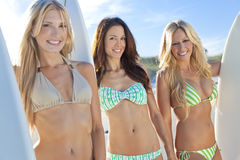 Women Surfers In Bikinis With Surfboards At Beac Royalty Free Stock Photography