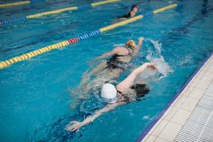 Women Swimmers In The Pool royalty free stock photography