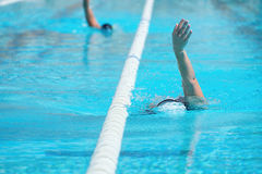 Women swimming backstroke in a race. In the pool Royalty Free Stock Image