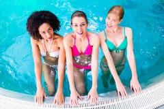 Women swimming in pool. Friends wearing bikinis bathing in swimming pool Stock Images