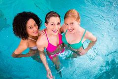 Women swimming in pool Royalty Free Stock Photos