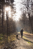 A women take the dog for a walk Stock Photography