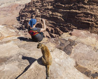 Women takes photo on High Place of Sacrifice. Petra. Jordan. Stock Photos