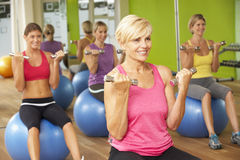 Women Taking Part In Gym Fitness Class Royalty Free Stock Image