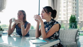 Women talking and drinking coffee or tea. stock footage