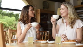 Women talking over coffee. Two beautiful mature women holding cup of coffee and talking to each other in a cafeteria. Senior women in conversation while having stock video footage