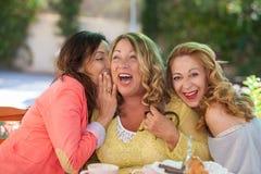 Women telling gossip and secrets. Happy women friends telling gossip and secrets, whispering and laughing Stock Photos