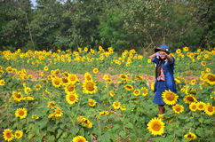 Women Thai Portrait on Sunflower Field at Saraburi Thailand Stock Photos
