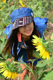Women Thai Portrait on Sunflower Field at Saraburi Thailand. The sunflower (Helianthus annuus) is an annual plant native to the Americas. It possesses a large royalty free stock images