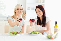 Women toasting with wine Stock Photography