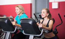 Women training on exercise bikes Stock Photos