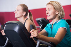 Women training on exercise bikes together Royalty Free Stock Photo