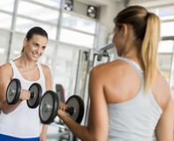 Women training in the gym Royalty Free Stock Photography